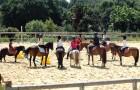 Stage et cours au Centre équestre