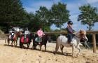 Cours et stages au Centre équestre