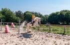 Stage d'équitation saut d'obstacle