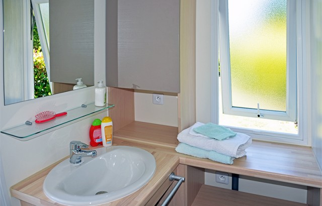 Douche, lavabo et WC