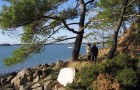 Balade sur les sentiers du Golfe du Morbihan à Baden