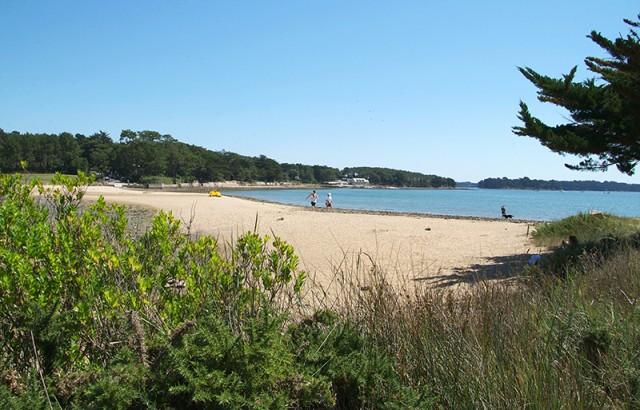 Plage du Golfe du Morbihan