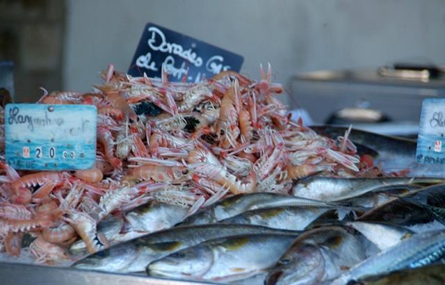 Vente de langoustines et poissons locaux