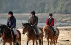 Balade à cheval ou à poney en groupe