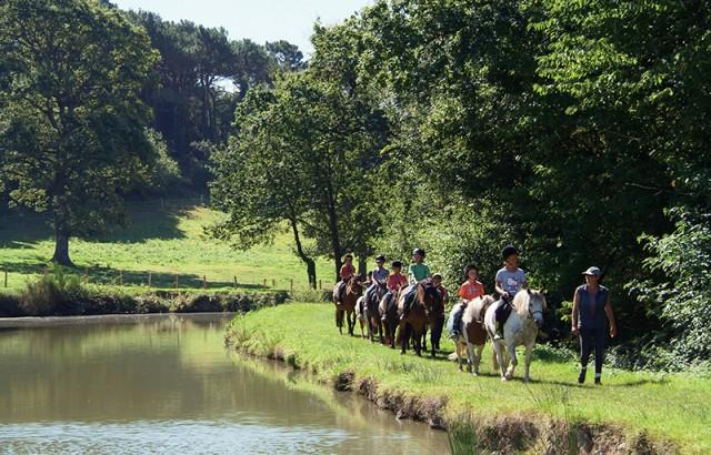 Promenade accompagnée en poney Centre équestre