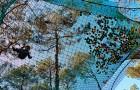 Nouveau Trampoforest au parcours accrobranche