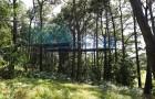 Le TrampofÔrest dans les arbres