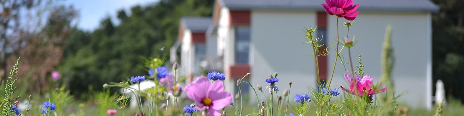 Appartement en résidence écologique