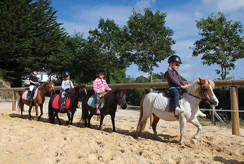 Riding lessons training courses