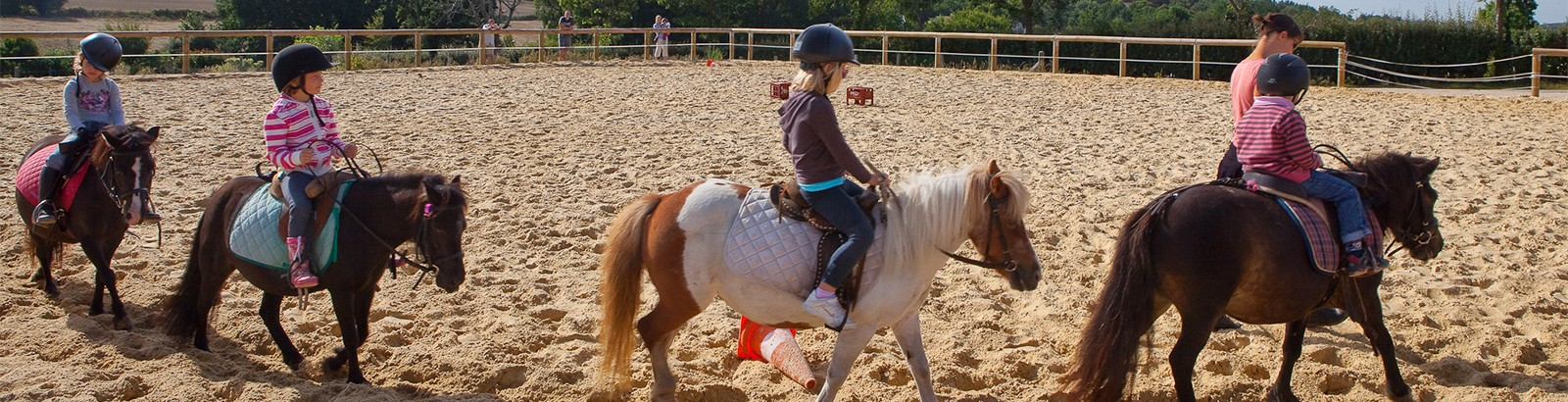 Lessons and pony ride in the riding school