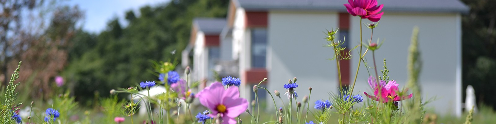 Eco-friendly holiday in an apartment for 4 to 6 persons