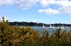 Golfe du Morbihan pendant la Semaine du Golfe