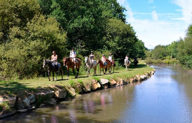 Balade à poney ou à cheval au centre équestre