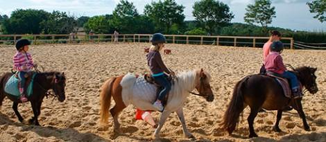 cours-centre-equestre-490px