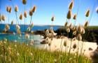 La lagure ovale sur l'Ile de Hoedic © Morbihan Tourisme - Marc Schaffner