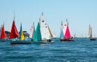 Régates de Guépards dans le Golfe du Morbihan