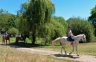 Balade dans le parc de Mané Guernehué