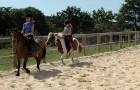 Cours et stage d'équitation au centre équestre
