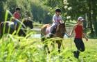 Promenade à poney au camping de Baden
