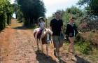 Promenade à poney au centre équestre de Baden