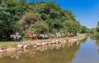Passion de l'équitation à Mané Guernehué