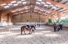 Concentration à poney dans le manège couvert