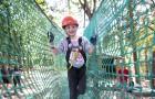 Au parc aventure